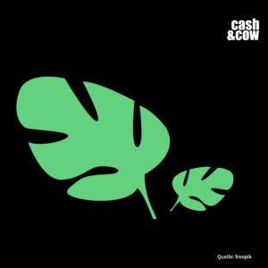 Ein kleines und ein großes grünes Blatt